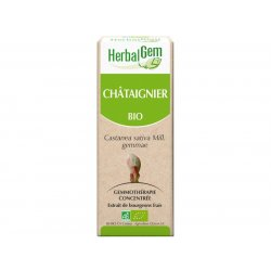 Chataigner bourgeon Bio - 15 ml